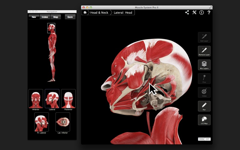 Muscle System Pro III APK for Android - Download Free