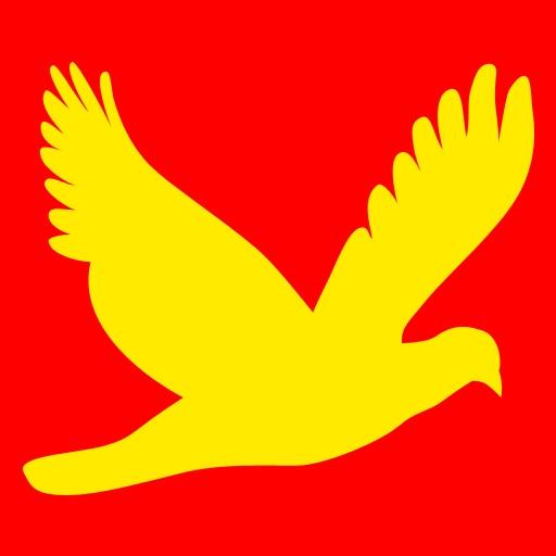 BirdSight China