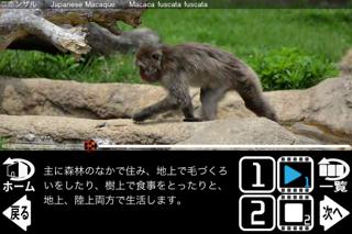 動く!動物図鑑 mini FREEのおすすめ画像4