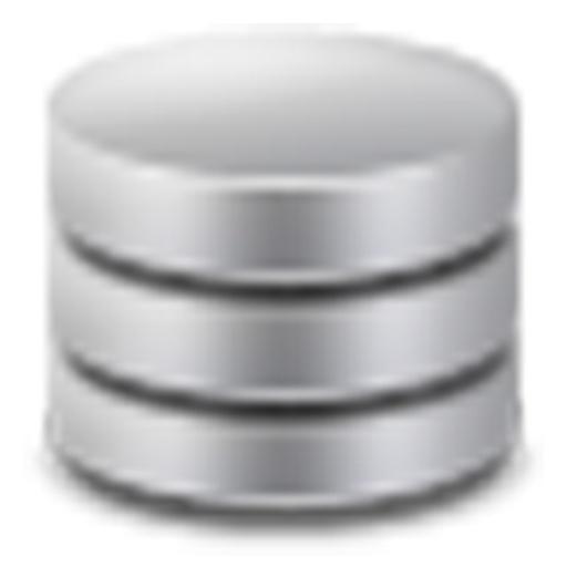 My Database Manager
