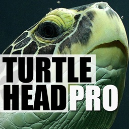 TurtleHead Pro
