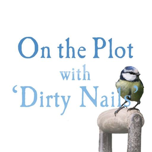 On the Plot icon
