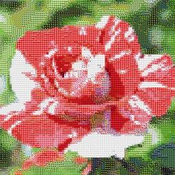 Photo Mosaic App
