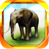 REAL ANIMALS HD (Full) - PROPE