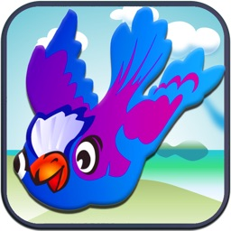 Mr. Bird's Dumb Puzzle Practice Test (Now Free!)