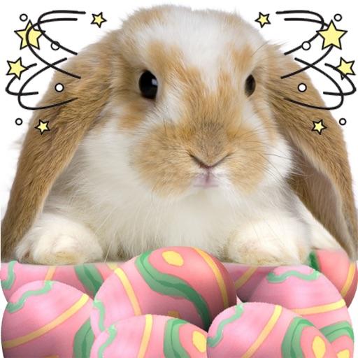 A Whack - A - Bunny