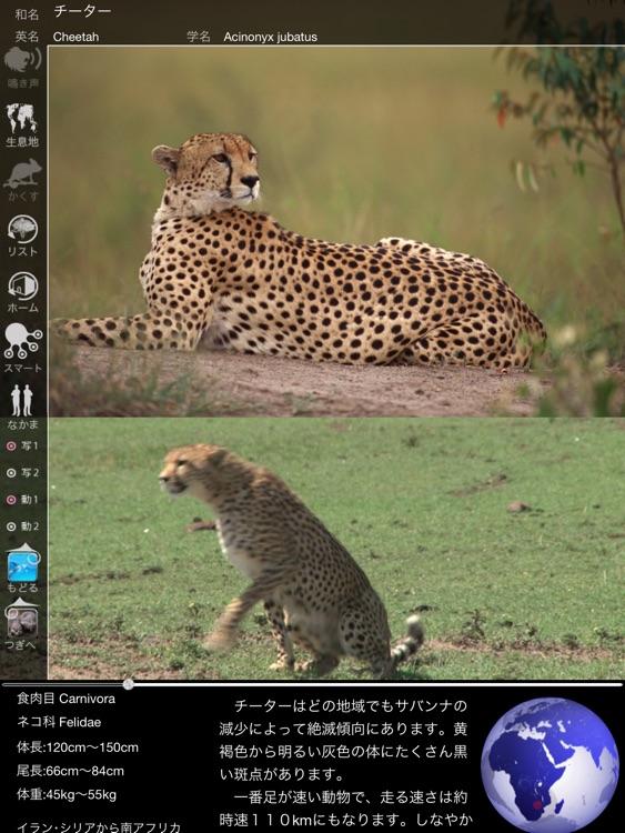 Animal Life Free for Japan screenshot-4