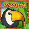 Bird Run