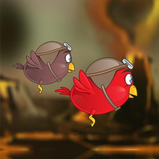 Multiplayer Bird Race