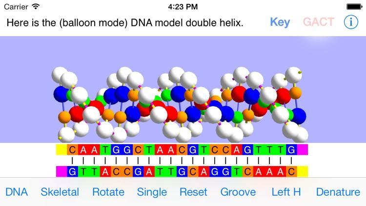 OnScreen DNA Model for iPhone screenshot-0