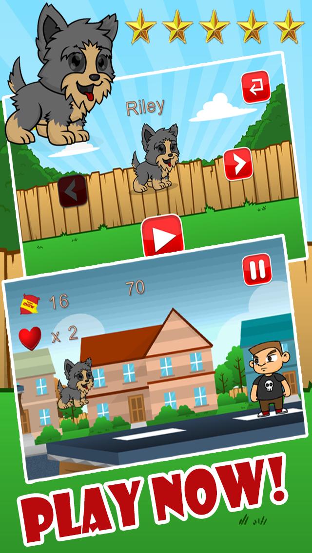 Yorkie Pup Fun Run screenshot four