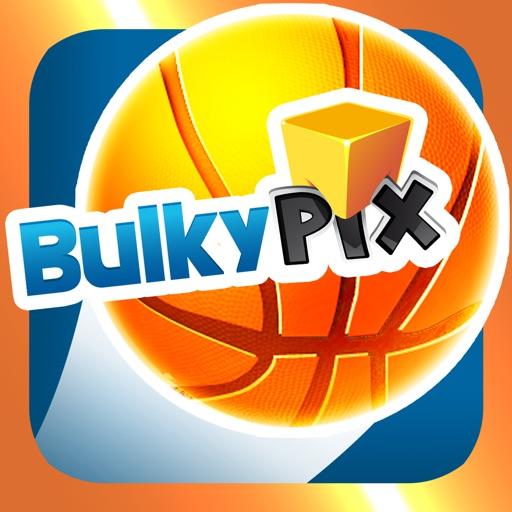 Bulkypix Basket