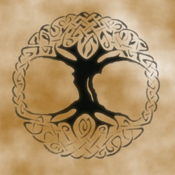 Celtic Tree Calendar