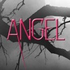 Angel by James Patterson - iPhoneアプリ