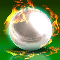 Real Pinball - Wild-Games