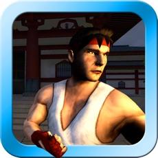 Activities of Zen Warrior