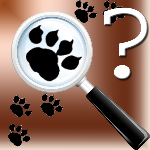 Animal Tracks Quiz