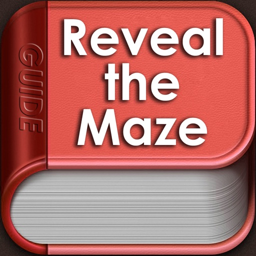 Guide for Reveal The Maze