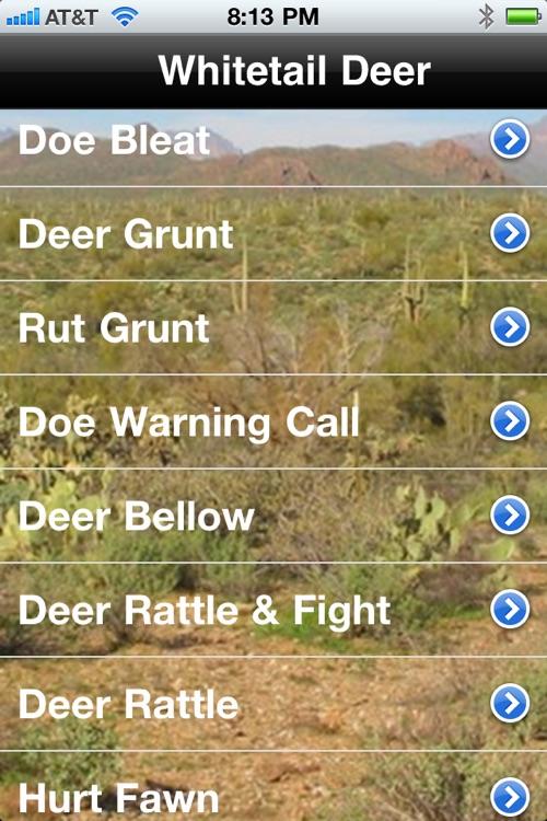 Deer Calls & Sounds