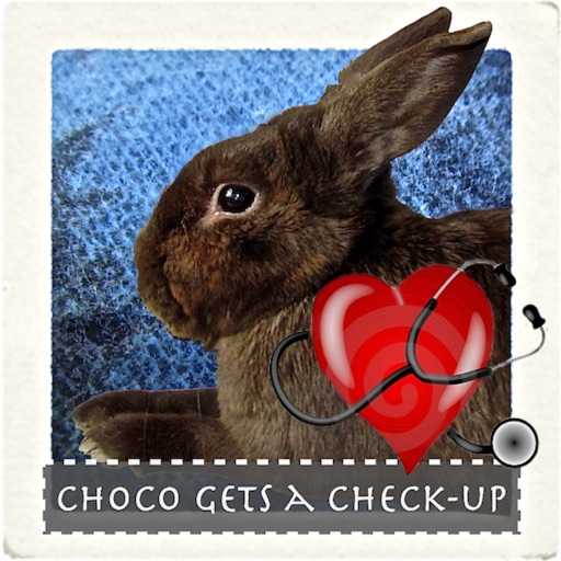 Choco Gets A Check Up HD