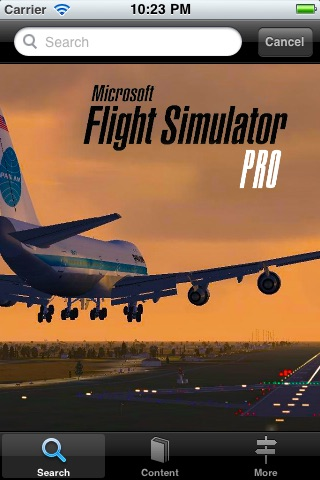 Flight Simulator Pro screenshot-3