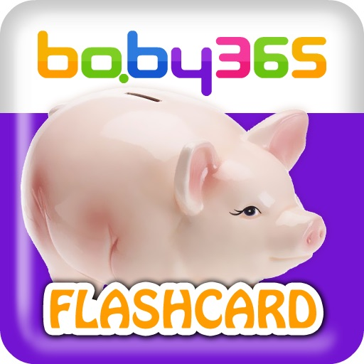 baby365-flashcards-life products