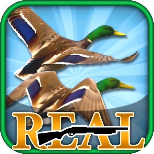 Real Bird Hunting Challenge