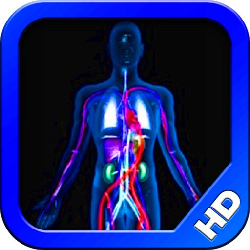 The Body HD - Human Anatomy Learning Tool & Quiz