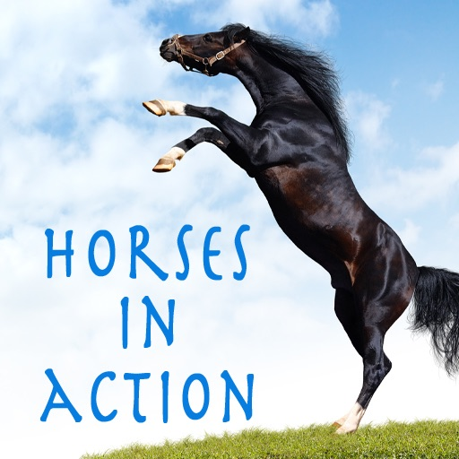 Horses in Action