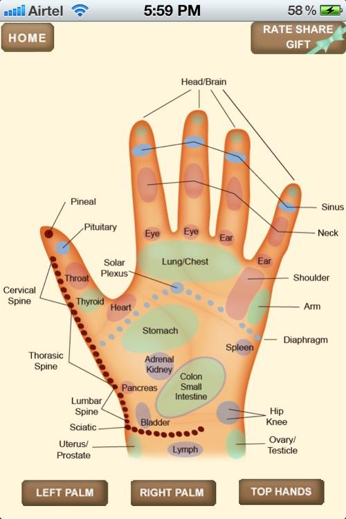 iPocket Hand Reflexology