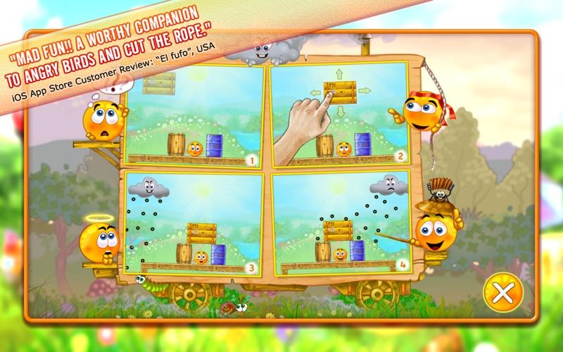 Protégez vos oranges de la grêle-capture-3