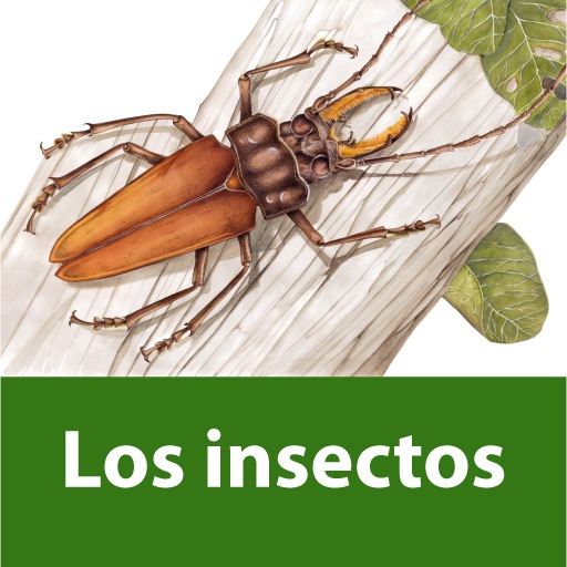 The world of insects. Visual Encyclopaedia of Questions icon