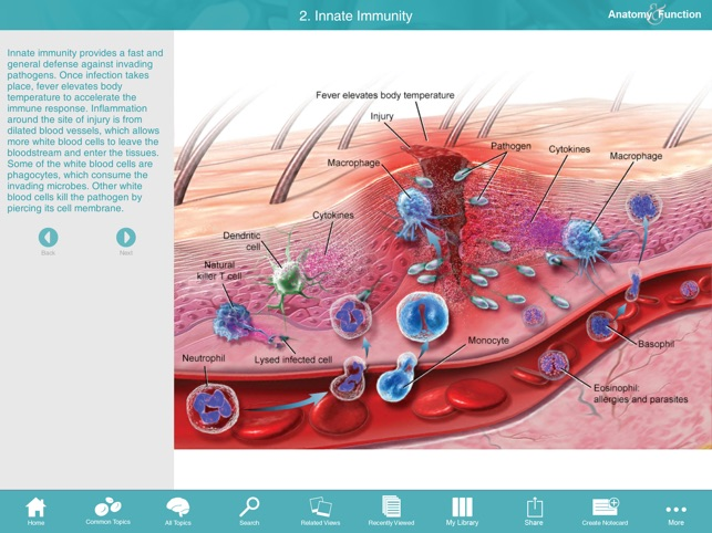 Anatomy function a 3d visual reference of the human body en app store malvernweather Choice Image