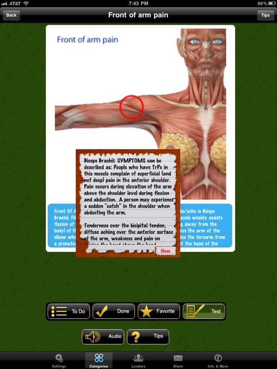 Muscle Trigger Points Doctor for iPad screenshot-4