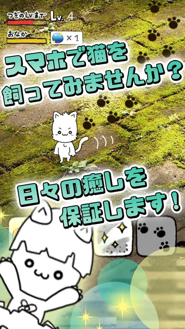 にゃんこ日和〜ほのぼの子猫育成ゲーム〜スクリーンショット2