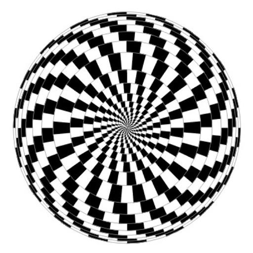 300 Optical Illusions