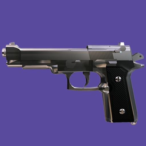Gun - Great New Gun Application Free