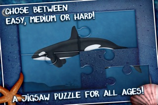 jigsaw puzzle with whales and sharks app price drops