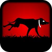 Codes for Dog Run Escape Hack