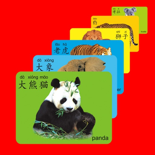 Living Chinese Flash Cards