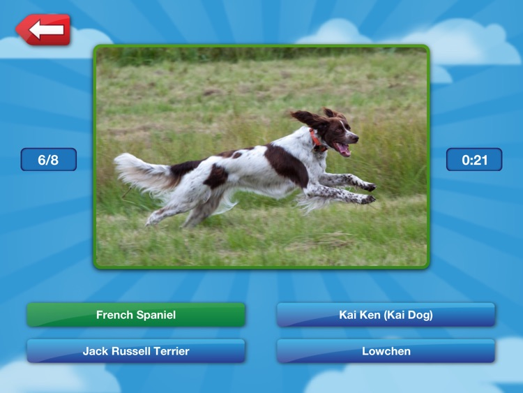 Name That Dog HD Free: The Unleashed Photo Game About Dogs