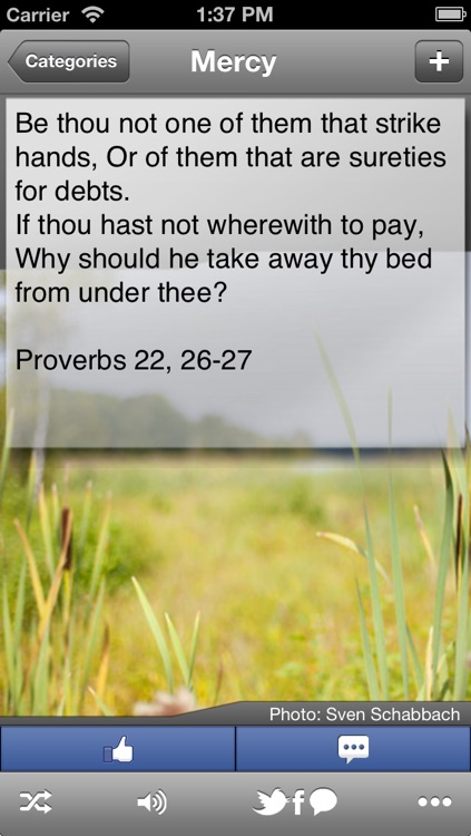 Bible Quotes: My Lord - Inspirational Verses from the Bible for Everyday Life screenshot-3