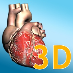 Explore the Heart in 3d