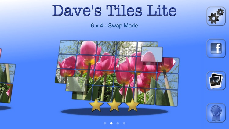Dave's Tiles Puzzle Lite screenshot-0