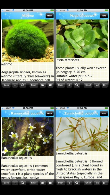 Aquarium Plants Encyclopedia screenshot-1