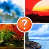 4 Pics - Can You Guess The Word?