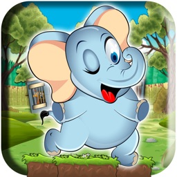 A Super Elephant Run - An Addictive Animal Zoo Escape Rush