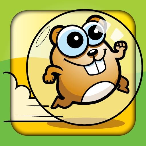 Crazy Hamster Ball