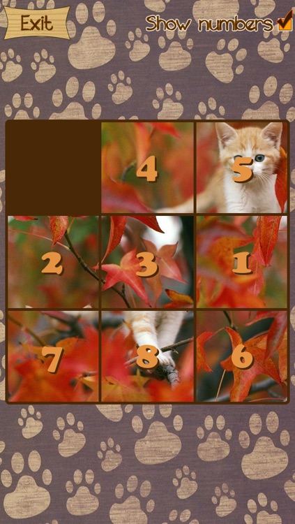 Kitten Slide Puzzles screenshot-1
