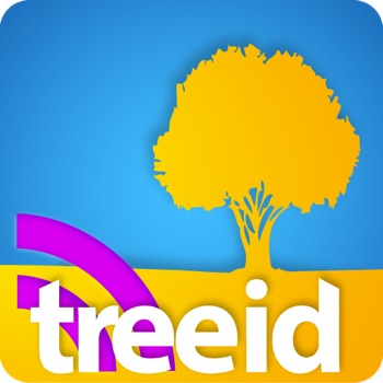 Tree ID - TreeID with Fall Foliage